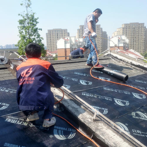 防水补漏 楼顶/屋面防水 楼顶防水等 免费勘察